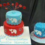 Elephant Cake with Smash Cake